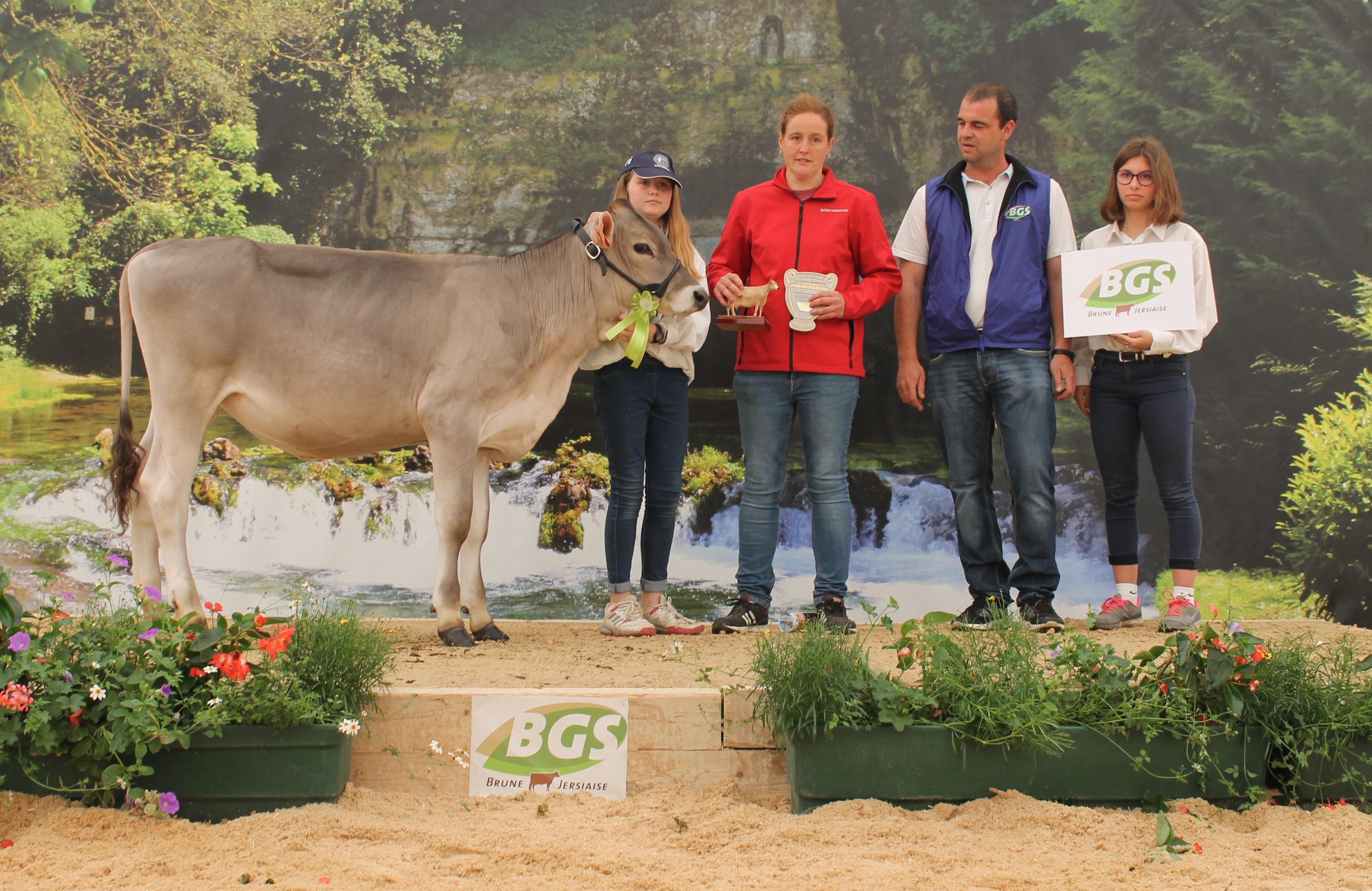 Championne génisses Earl des Ardelons à Semur en Auxois (21)